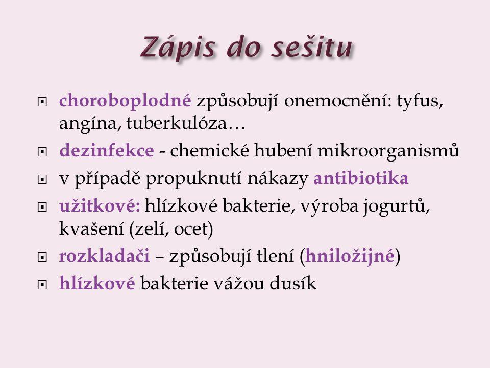 Zápis do sešitu choroboplodné způsobují onemocnění: tyfus, angína, tuberkulóza… dezinfekce - chemické hubení mikroorganismů.