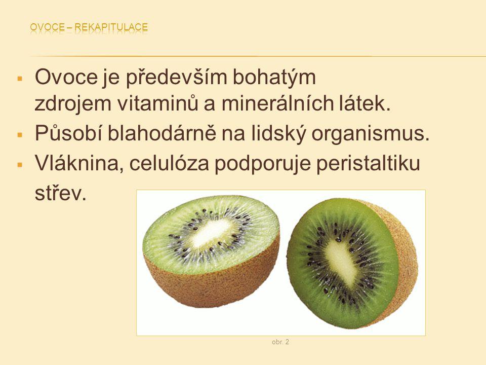 Ovoce je především bohatým zdrojem vitaminů a minerálních látek.