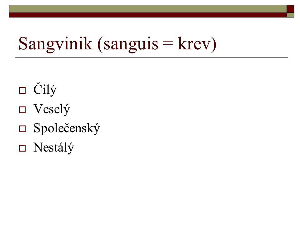 Sangvinik (sanguis = krev)