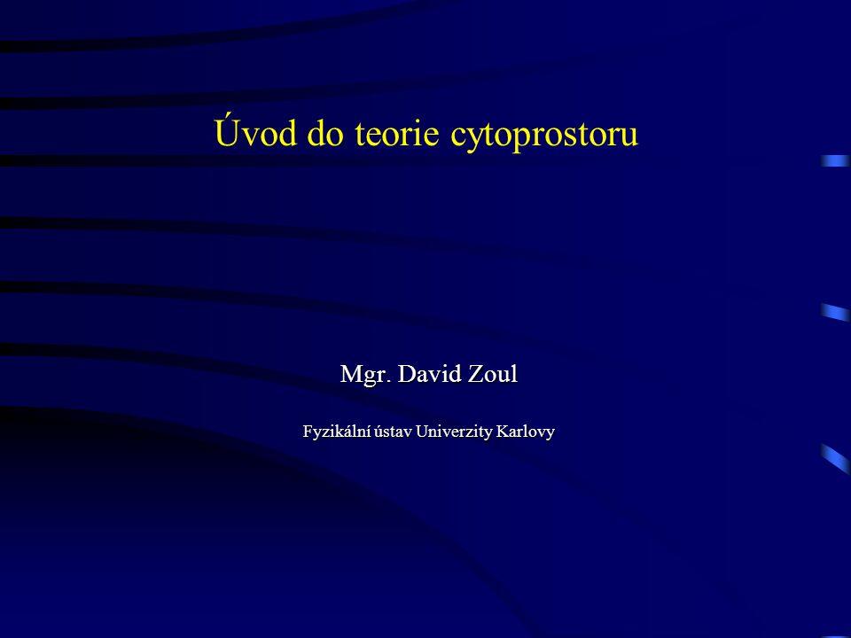 Úvod do teorie cytoprostoru