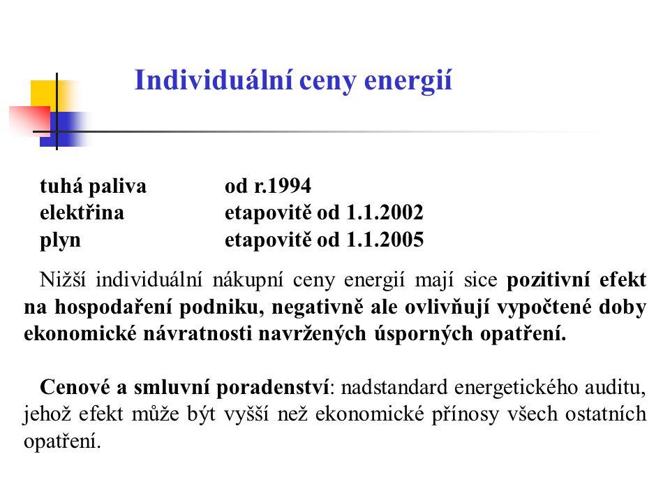 Individuální ceny energií