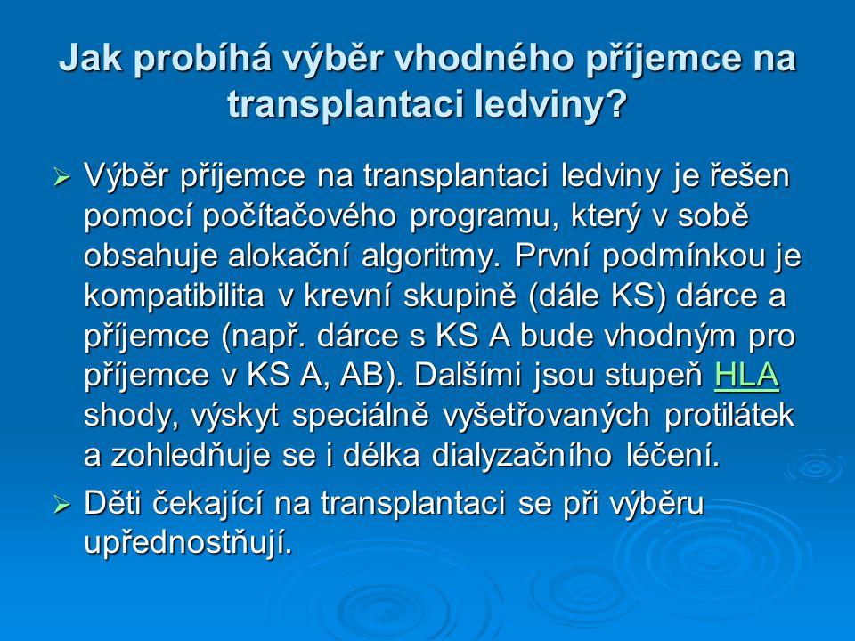 Jak probíhá výběr vhodného příjemce na transplantaci ledviny