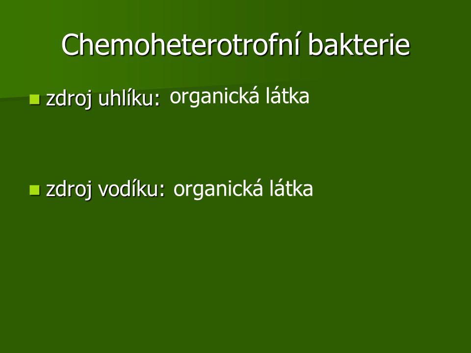 Chemoheterotrofní bakterie
