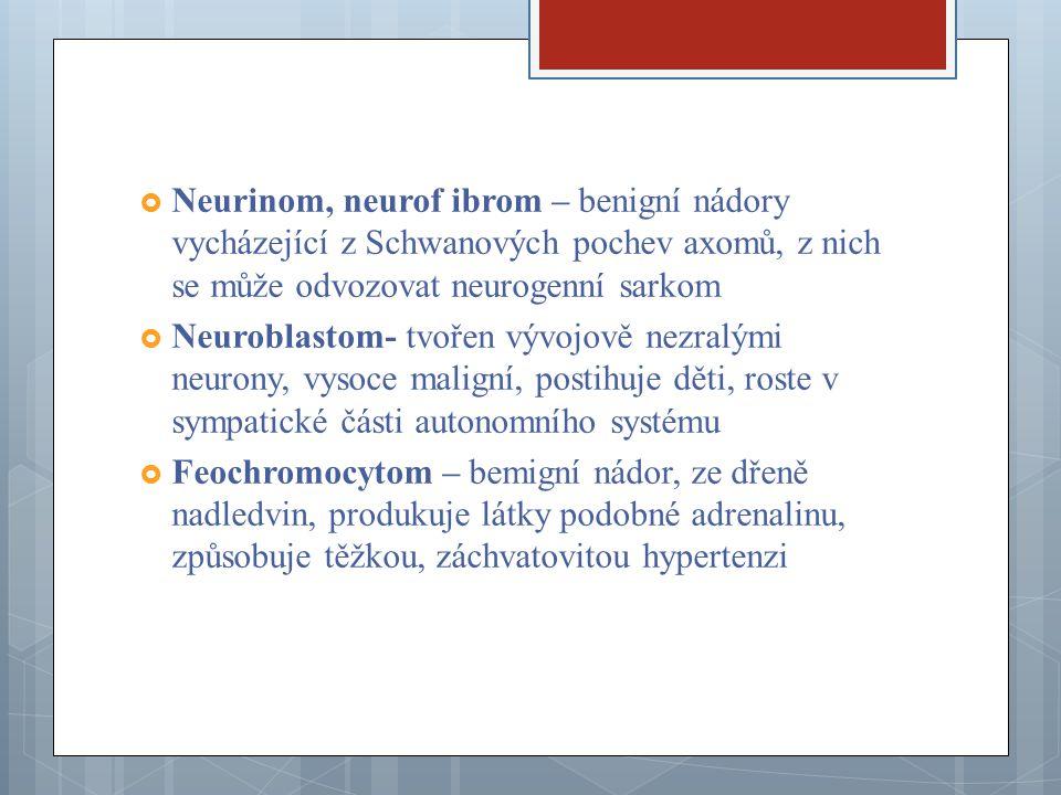 Neurinom, neurof ibrom – benigní nádory vycházející z Schwanových pochev axomů, z nich se může odvozovat neurogenní sarkom