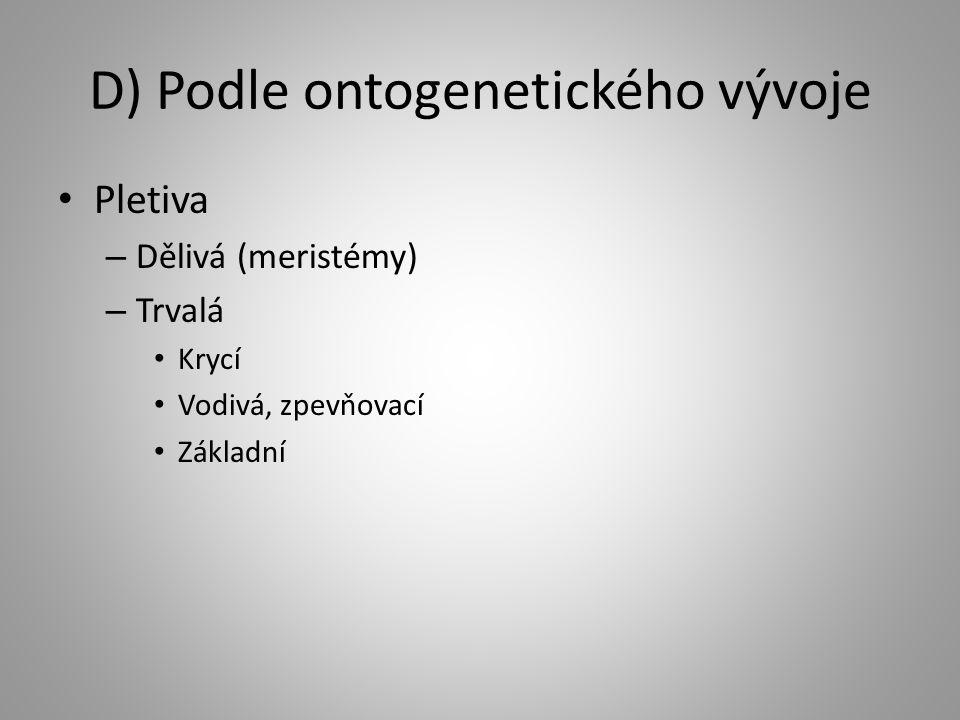 D) Podle ontogenetického vývoje