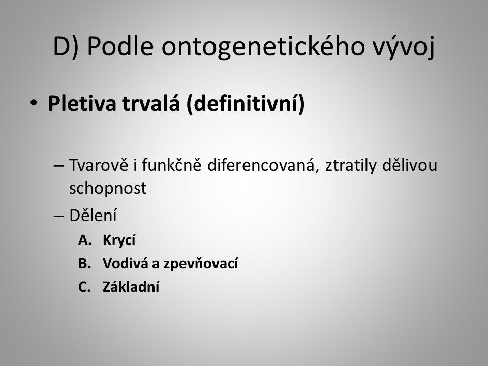 D) Podle ontogenetického vývoj
