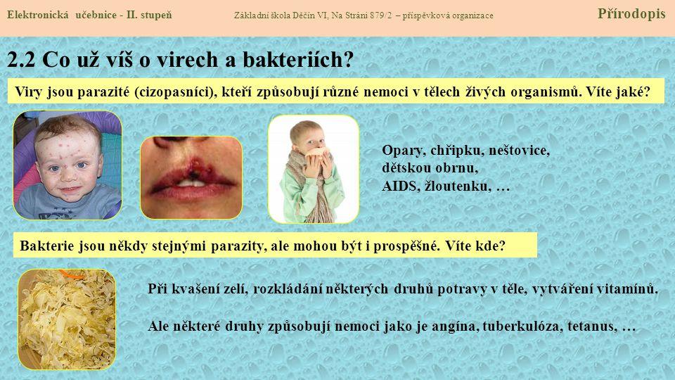 2.2 Co už víš o virech a bakteriích
