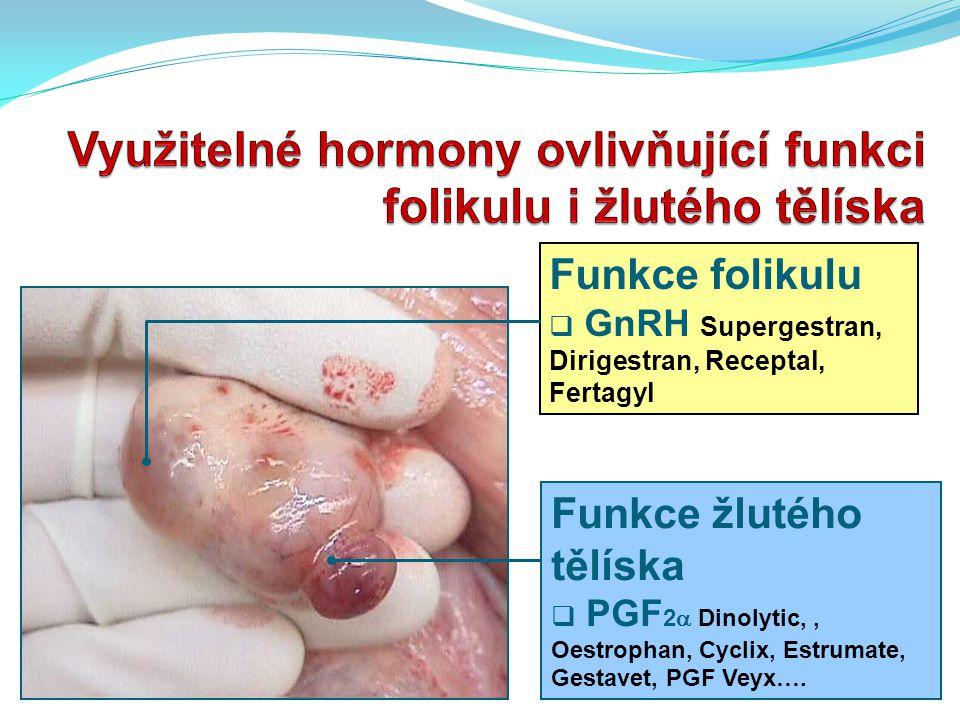 Využitelné hormony ovlivňující funkci folikulu i žlutého tělíska