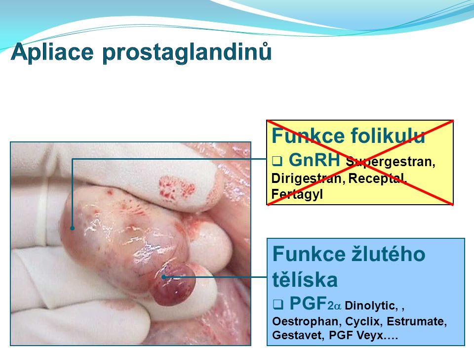 Apliace prostaglandinů