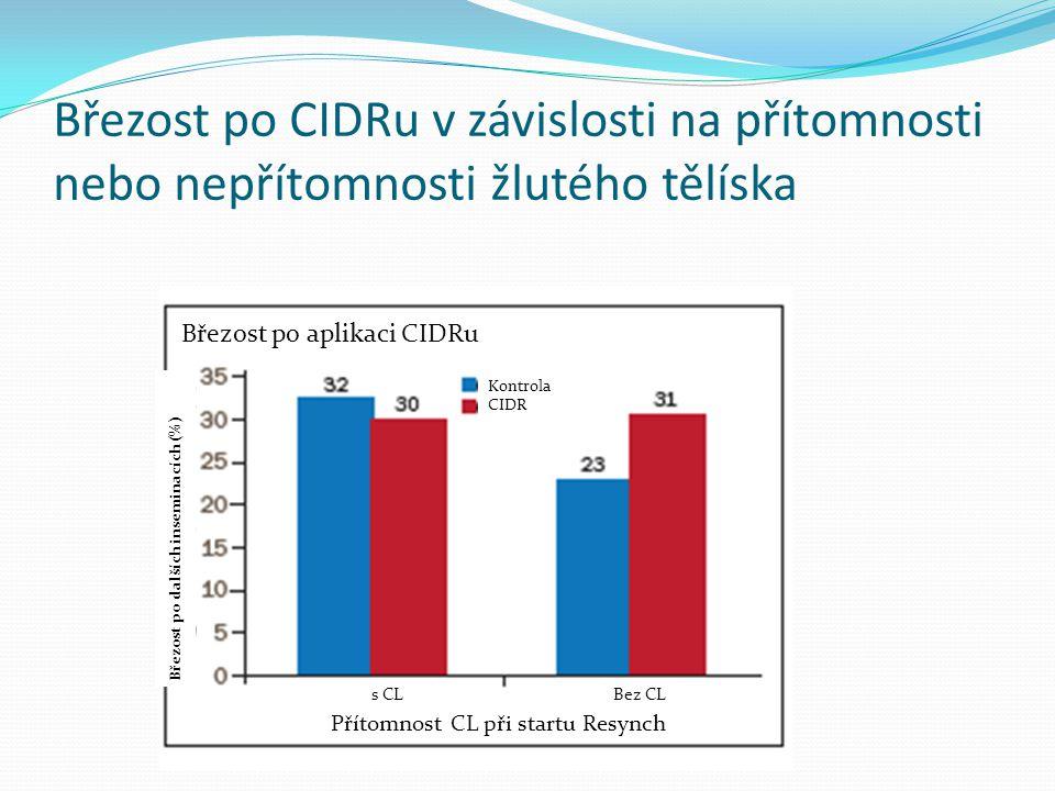 Březost po CIDRu v závislosti na přítomnosti nebo nepřítomnosti žlutého tělíska