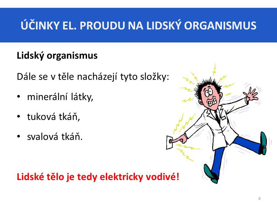 ÚČINKY EL. PROUDU NA LIDSKÝ ORGANISMUS