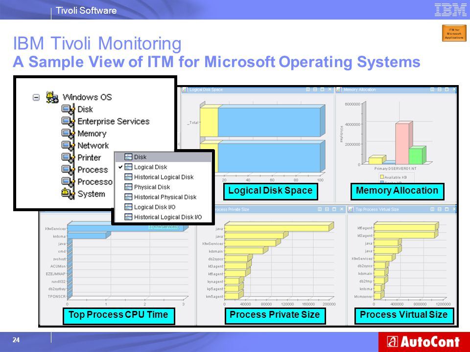 IBM Tivoli Monitoring A Sample View of ITM for Microsoft Operating Systems