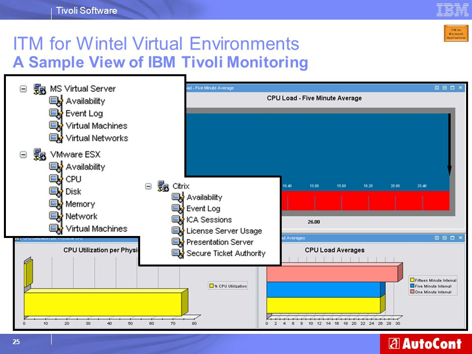 ITM for Wintel Virtual Environments A Sample View of IBM Tivoli Monitoring