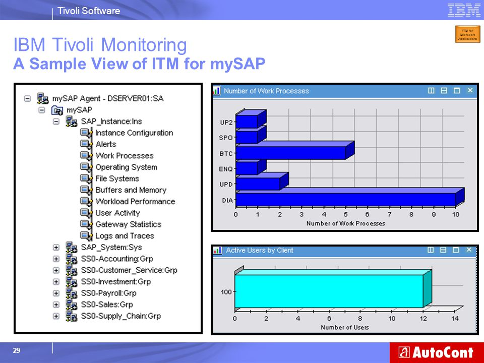 IBM Tivoli Monitoring A Sample View of ITM for mySAP