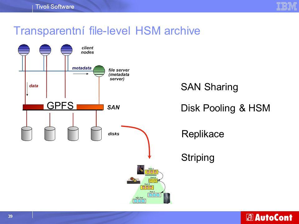 Transparentní file-level HSM archive