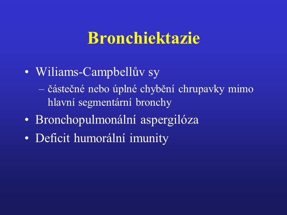 Bronchiektazie Wiliams-Campbellův sy Bronchopulmonální aspergilóza