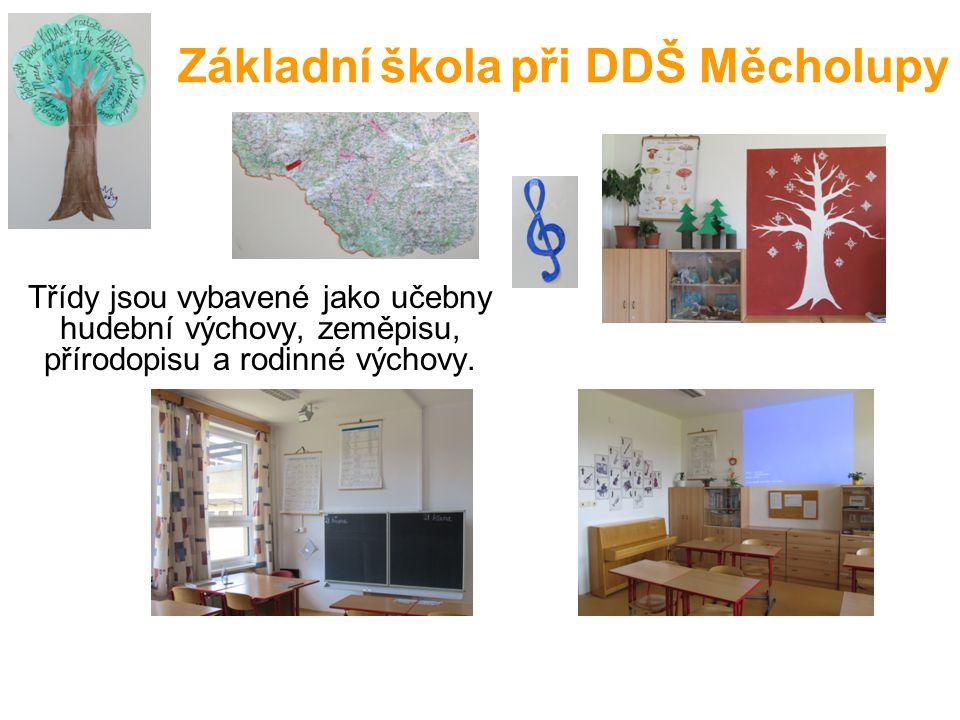 Základní škola při DDŠ Měcholupy