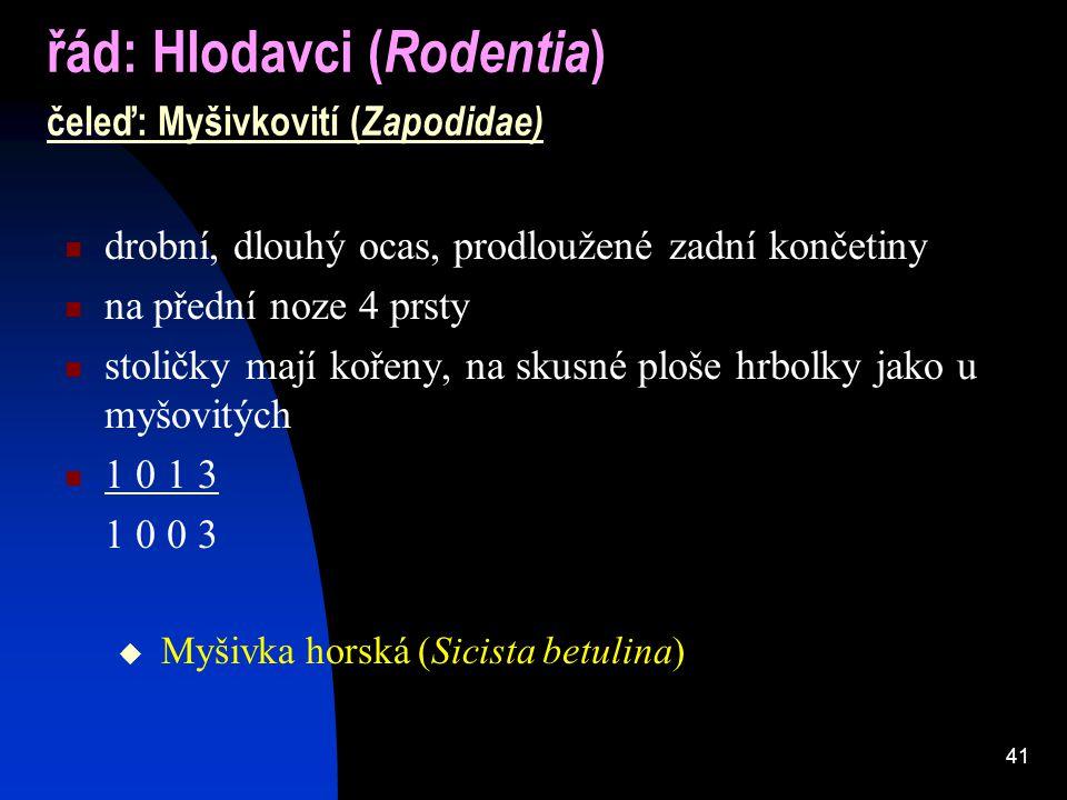 řád: Hlodavci (Rodentia) čeleď: Myšivkovití (Zapodidae)