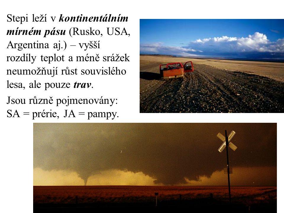 Stepi leží v kontinentálním mírném pásu (Rusko, USA, Argentina aj