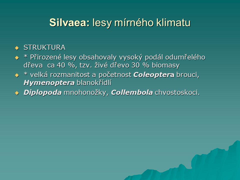 Silvaea: lesy mírného klimatu