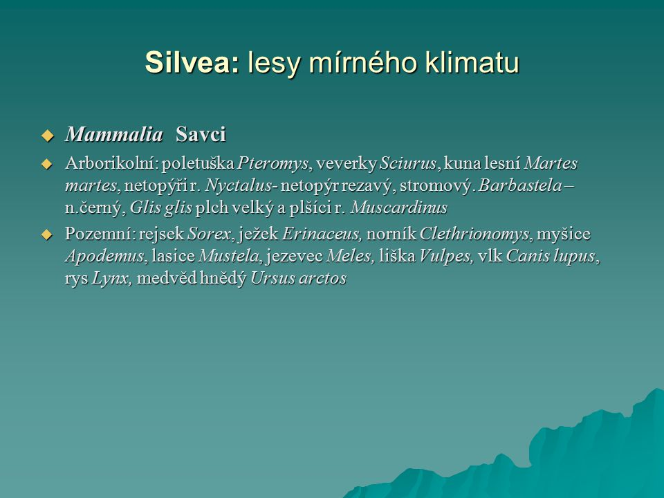 Silvea: lesy mírného klimatu