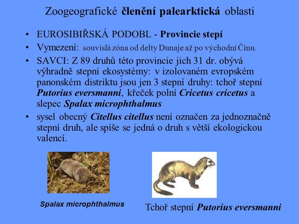Zoogeografické členění palearktická oblasti