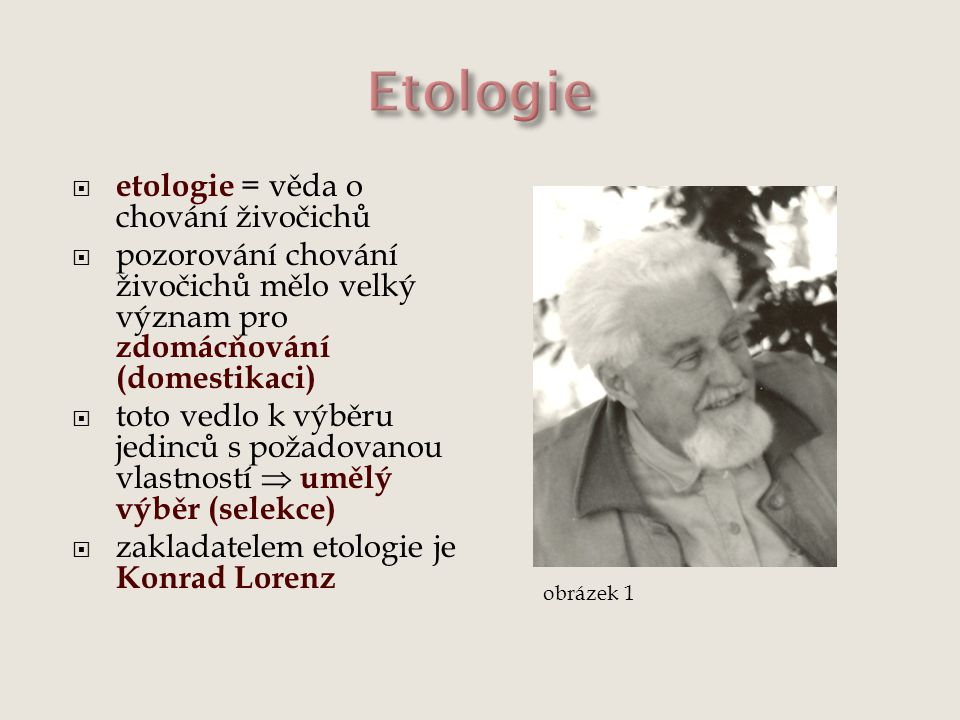 Etologie etologie = věda o chování živočichů
