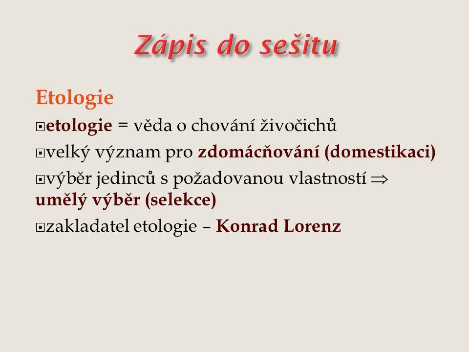 Zápis do sešitu Etologie etologie = věda o chování živočichů