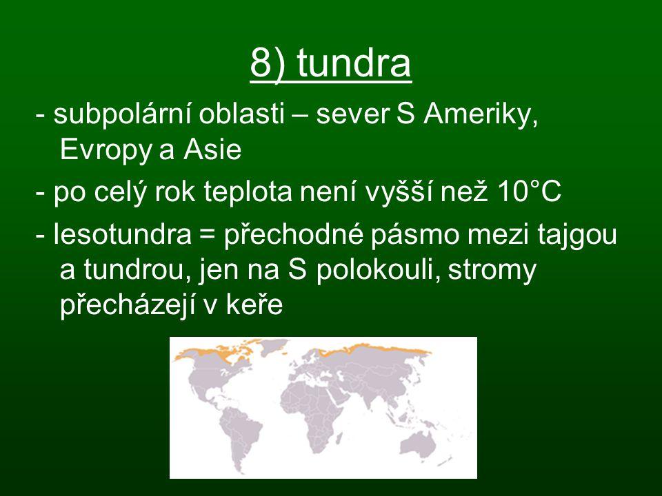8) tundra - subpolární oblasti – sever S Ameriky, Evropy a Asie
