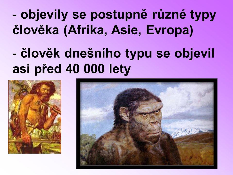 objevily se postupně různé typy člověka (Afrika, Asie, Evropa)