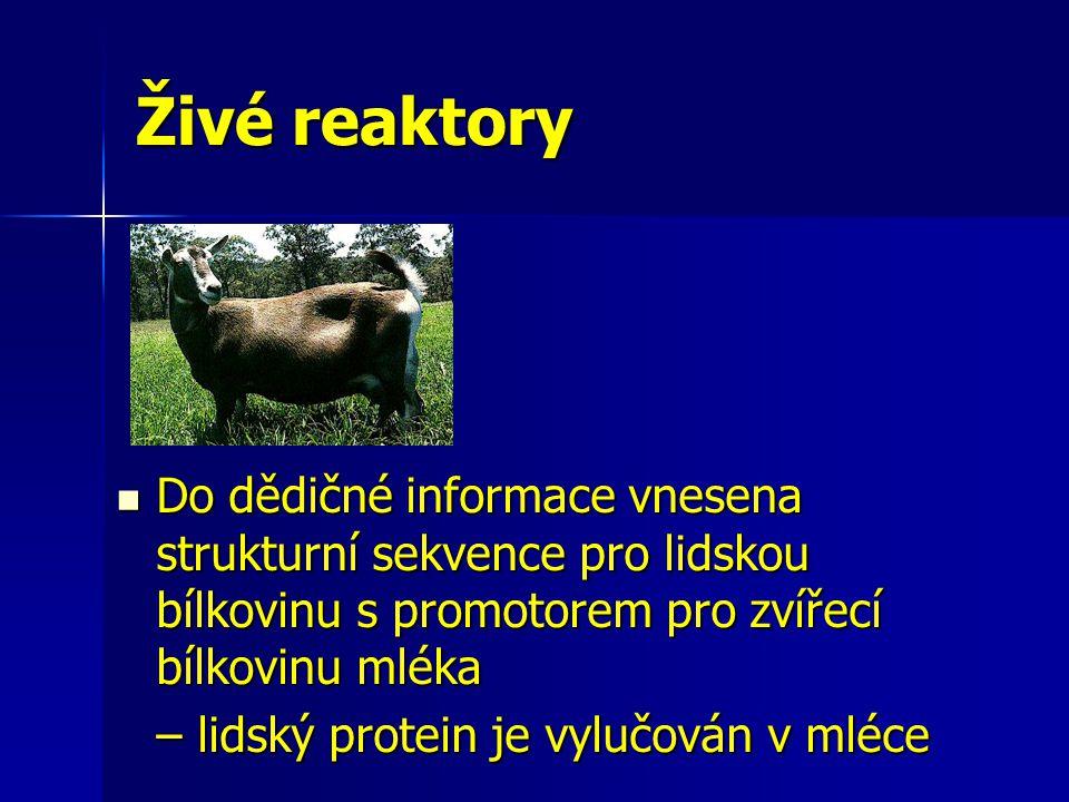 Živé reaktory Do dědičné informace vnesena strukturní sekvence pro lidskou bílkovinu s promotorem pro zvířecí bílkovinu mléka.