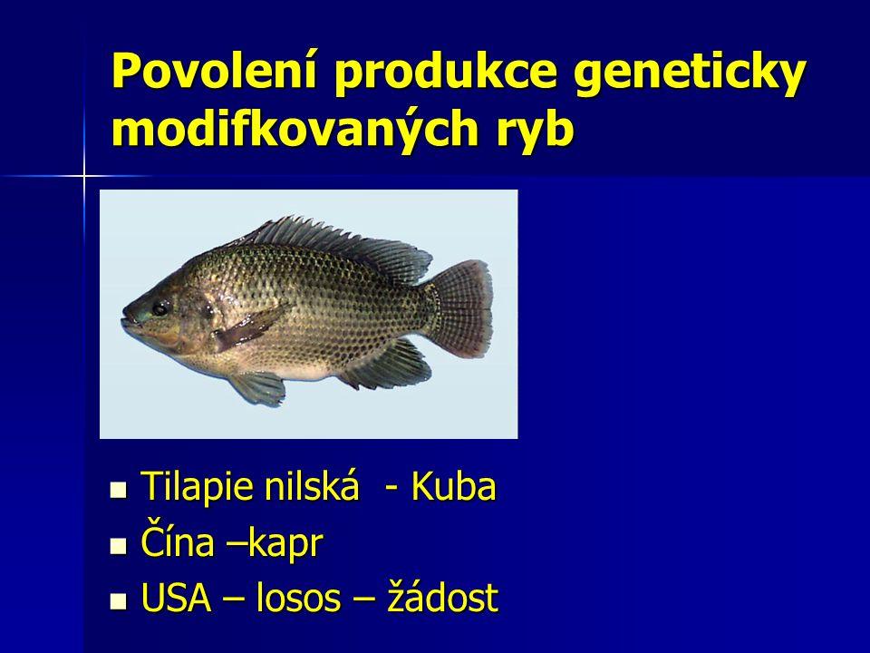 Povolení produkce geneticky modifkovaných ryb