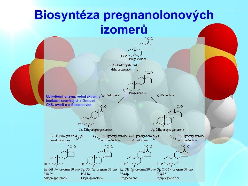 Biosyntéza pregnanolonových izomerů