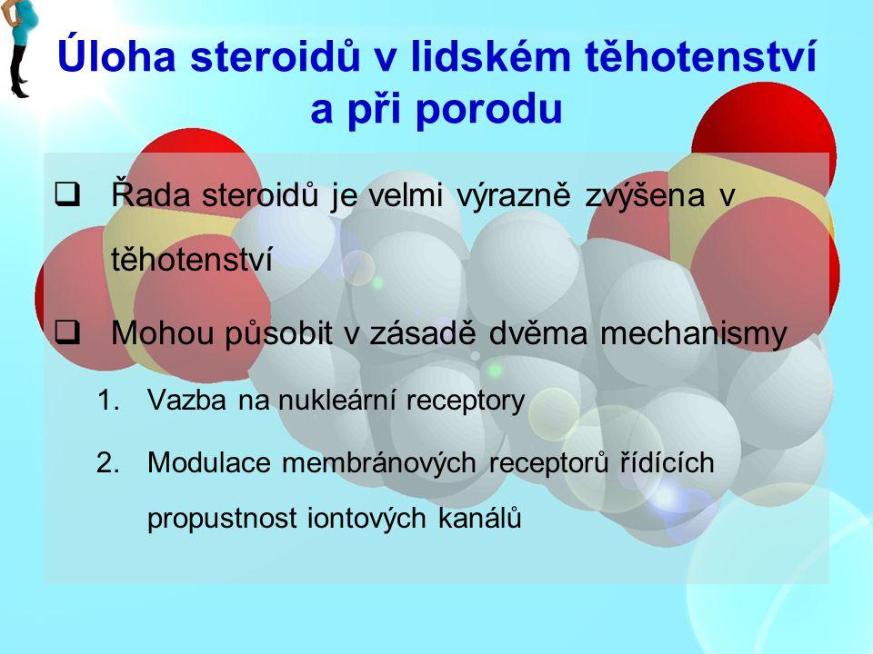 Úloha steroidů v lidském těhotenství a při porodu