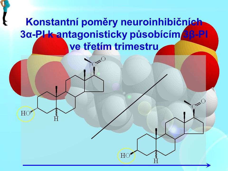 Konstantní poměry neuroinhibičních 3α-PI k antagonisticky působícím 3β-PI ve třetím trimestru