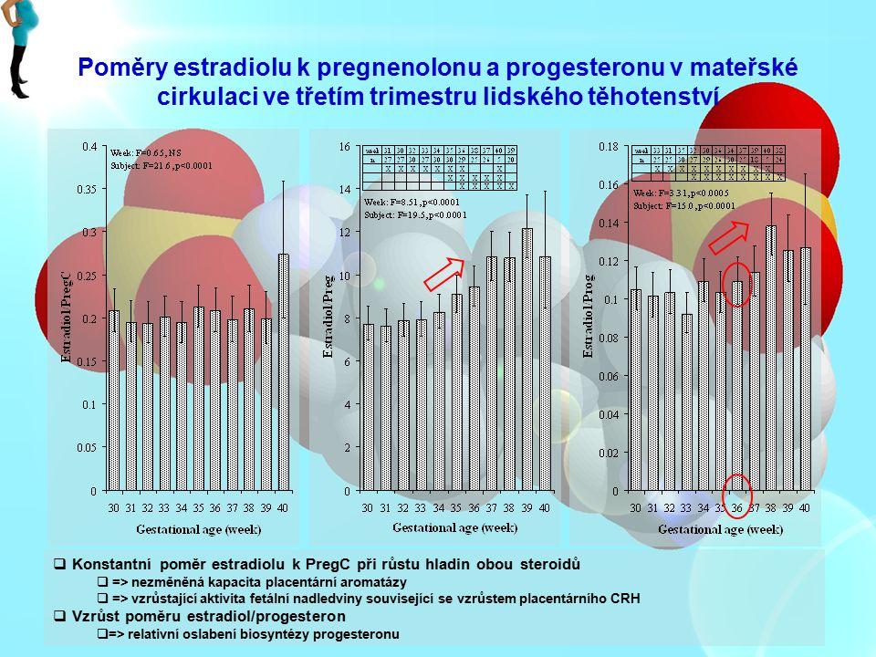 Poměry estradiolu k pregnenolonu a progesteronu v mateřské cirkulaci ve třetím trimestru lidského těhotenství