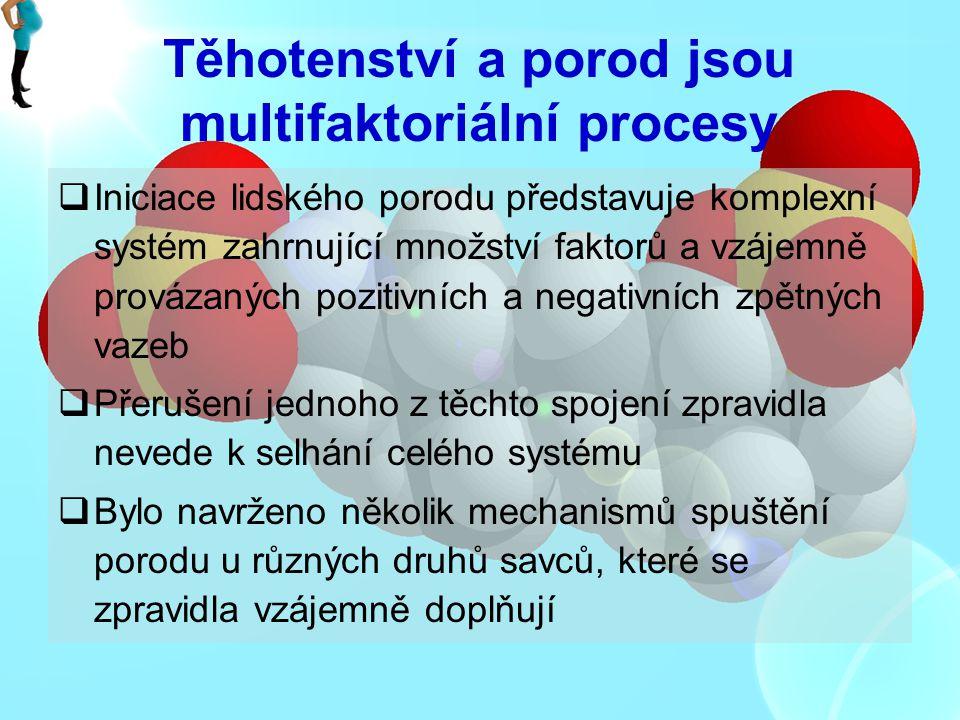 Těhotenství a porod jsou multifaktoriální procesy
