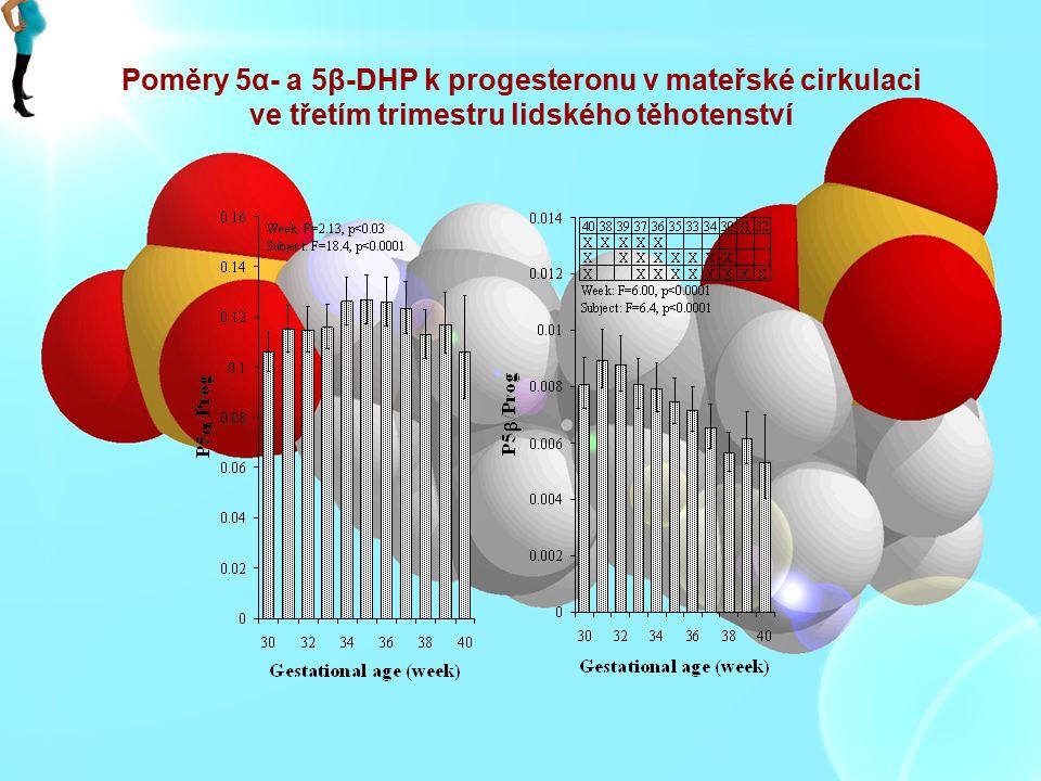 Poměry 5α- a 5β-DHP k progesteronu v mateřské cirkulaci ve třetím trimestru lidského těhotenství