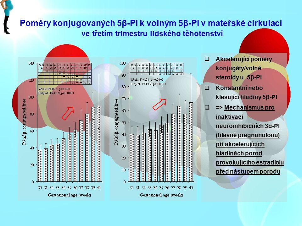 Poměry konjugovaných 5β-PI k volným 5β-PI v mateřské cirkulaci ve třetím trimestru lidského těhotenství