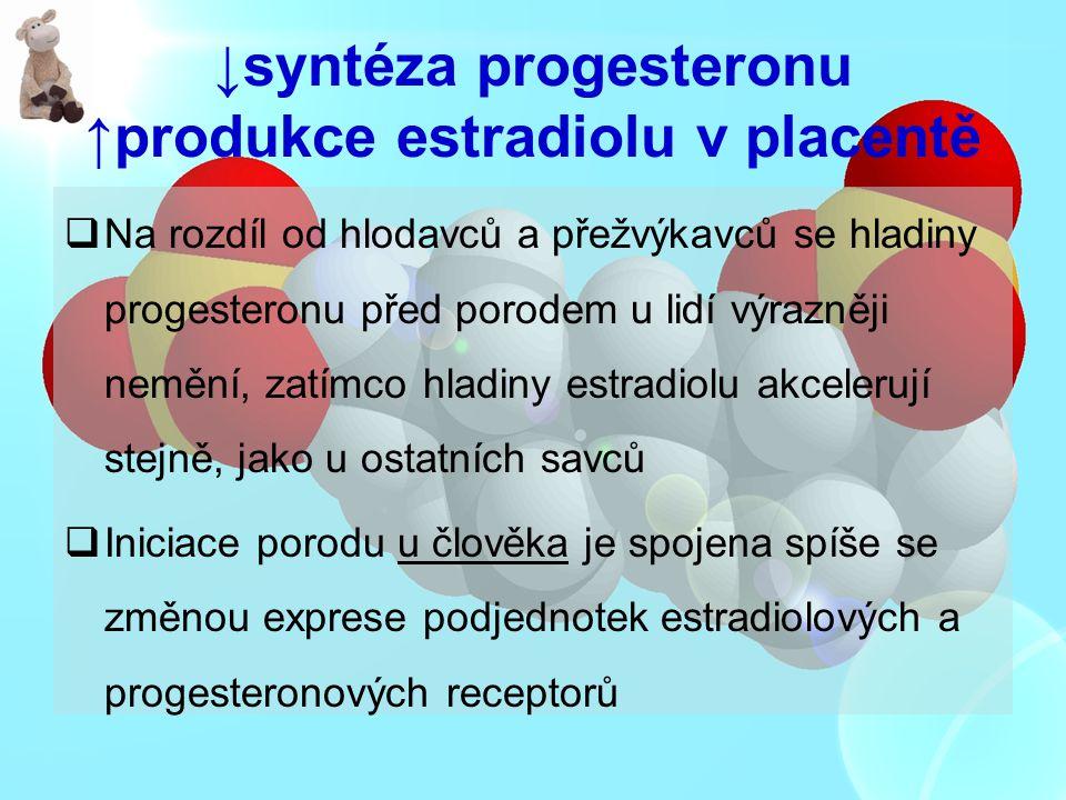 ↓syntéza progesteronu ↑produkce estradiolu v placentě