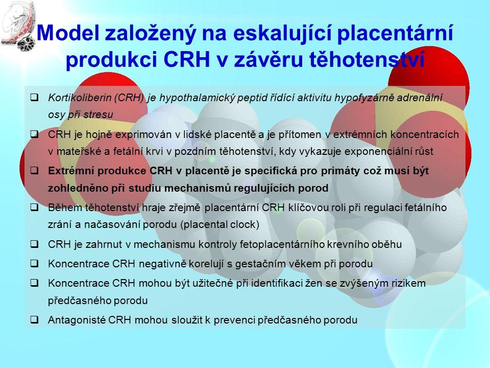 Model založený na eskalující placentární produkci CRH v závěru těhotenství