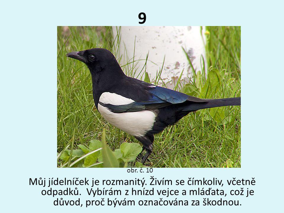 9 obr. č. 10.