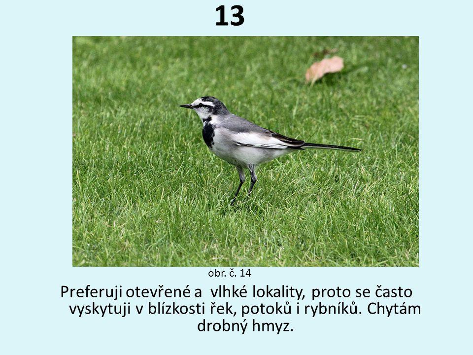 13 obr. č. 14.