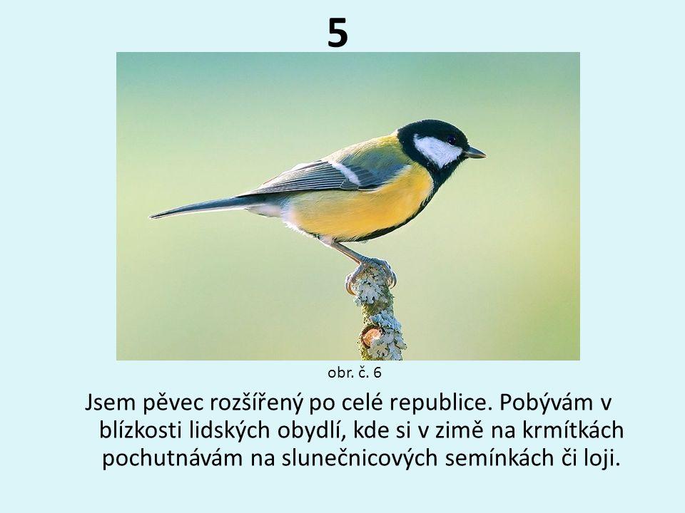 5 obr. č. 6.