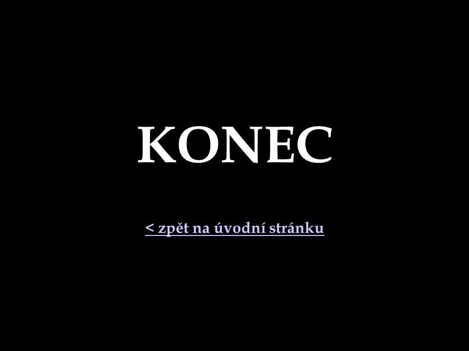 KONEC < zpět na úvodní stránku
