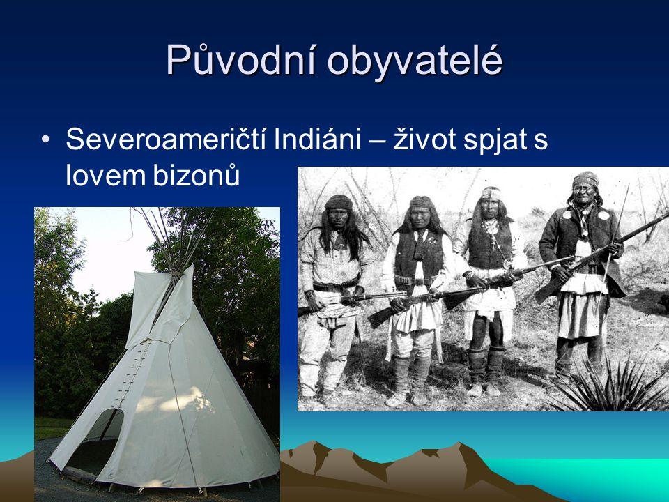 Původní obyvatelé Severoameričtí Indiáni – život spjat s lovem bizonů