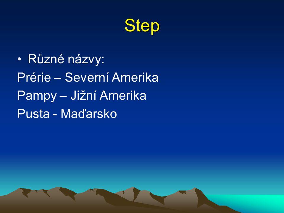 Step Různé názvy: Prérie – Severní Amerika Pampy – Jižní Amerika