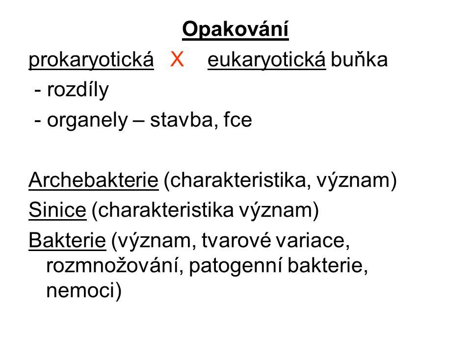 Opakování prokaryotická X eukaryotická buňka. - rozdíly. - organely – stavba, fce. Archebakterie (charakteristika, význam)