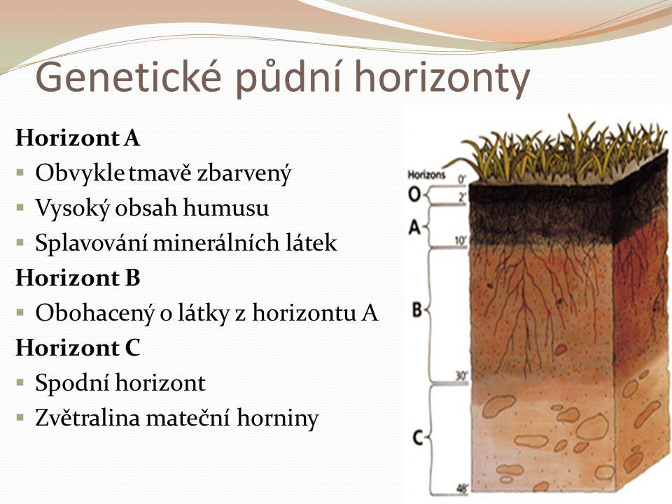 Genetické půdní horizonty