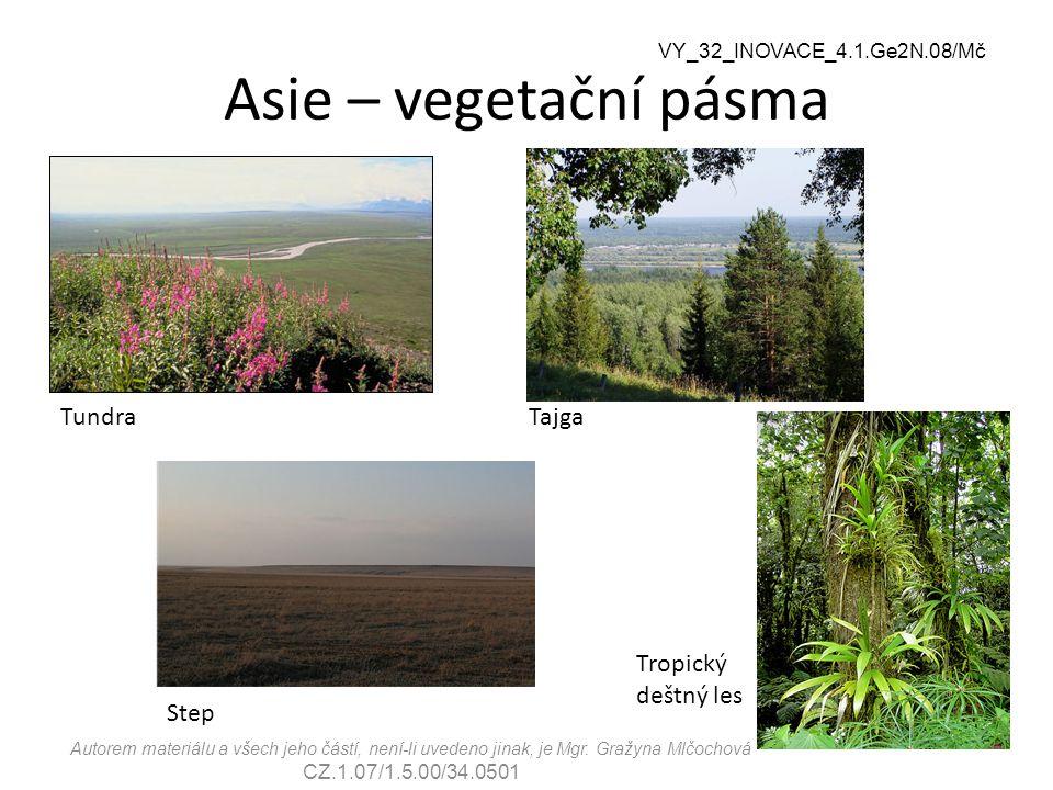 Asie – vegetační pásma Tundra Tajga Tropický deštný les Step